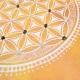tableau-fleur-de-vie-avec-oeil-de-tigre-et-quartz-rose