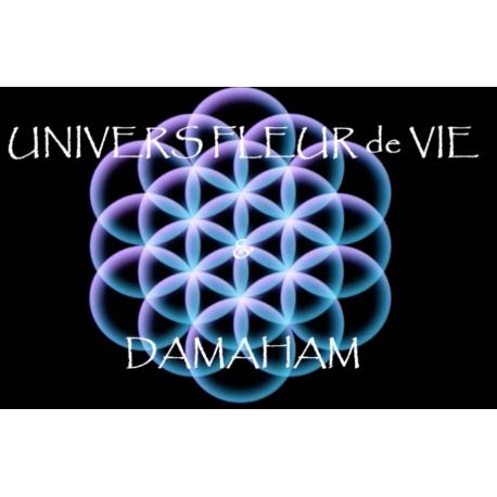 Méditation Fleur de Vie 432 Hz