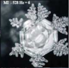 harmoniseur-528hz-univers-fleur-de-vie